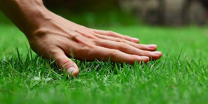 Lawn care services in Missouri city